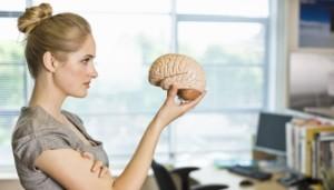 Девушка рассматривает модель мозга