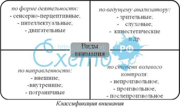 Классификация внимания