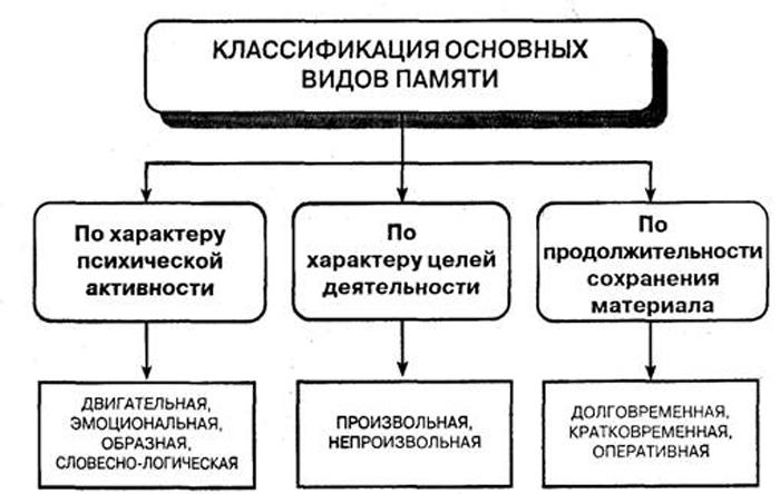 Классификация основных видов памяти