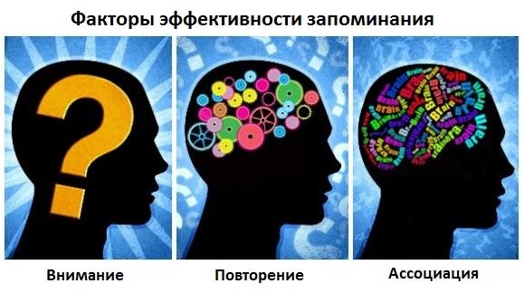 3 фактора эффективности запоминания