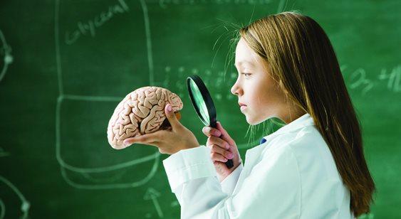 Изучение головного мозга